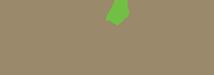 Soll_logo-751